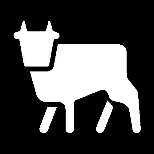 pictogramme vache