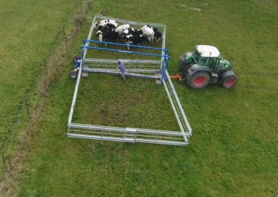 installation-parc-mobile-vache